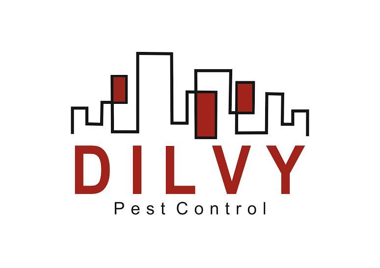 Imagem Logo Dilvy (002)- logo